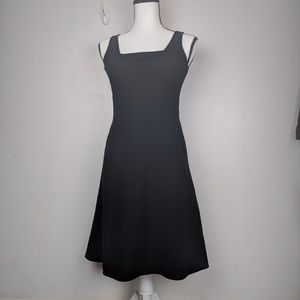 Ann Taylor petite fit and flair dress